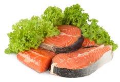 Les saumons et la laitue ont isolé Photo stock