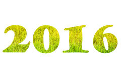 Les schémas 2016 au-dessus de l'herbe verte sur la pelouse Foyer sélectif Shal Photo libre de droits