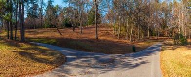 Les sentiers piétons et les collines dans Lullwater se garent, Atlanta, Etats-Unis Images libres de droits