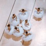 Les sept ballerines sur le plancher Photo libre de droits