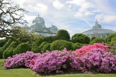 Les serres chaudes royales à Laeken photos stock