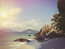 Les Seychelles tropicales Palmiers sur la La Digue Photo libre de droits