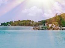 Les Seychelles tropicales Palmiers sur la La Digue Mahe Images stock