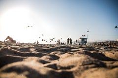 Les silhouettes de Diego de sable des adeptes de la plage Image stock