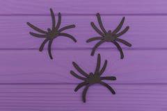 Les silhouettes de Halloween d'araignées coupées du papier Photographie stock
