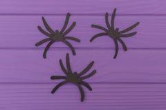 Les silhouettes de Halloween d'araignées coupées du papier Image stock