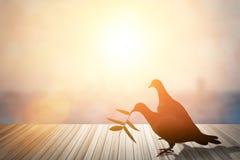 Les silhouettes du vol ont plongé en ciel rougeoyant rouge de coucher du soleil Photographie stock