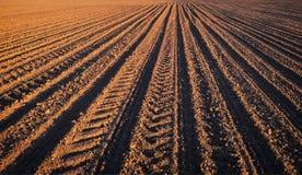 Les sillons rament le modèle dans un domaine labouré préparé pour des cultures de plantation au printemps Photographie stock