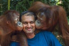 Les singes embrassent un homme de touristes image stock
