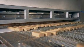 Les snack-bars vont sur un convoyeur, alors que des coupes de machine d'usine ils 4K banque de vidéos