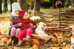 Les soeurs en automne garent se reposer sur le banc en bois près d'une barrière Images libres de droits