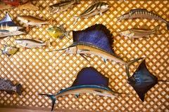 Les souvenirs en bois du jeu pêchent sur un mur Images stock