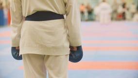 Les sports badine - des sportifs de garçon sur le karaté - préparent pour le combat photographie stock libre de droits