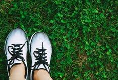 Les sports chausse des espadrilles sur une herbe verte fraîche Image stock