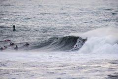 Les surfers montant les vagues énormes sur la côte ouest, près du point de pilier et des francs-tireurs échouent, Half Moon Bay,  images libres de droits