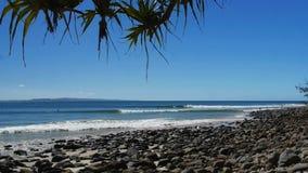 Les surfers montent des vagues à la coupure célèbre de point aux têtes de noosa clips vidéos