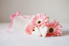 Les symboles de jour du ` s de Valentine offrent des fleurs de gerbera et des sucreries de coeur images stock