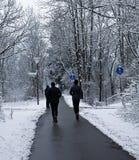 Les taqueurs fonctionnent sur le chemin parmi le bois dans l'hiver Photos stock
