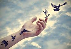 Les tatouages d'oiseau viennent à la vie Photographie stock