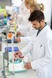 Les techniciens chimiques travaillent avec des tubes à essai dans le laboratoire Image stock