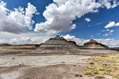 Les tepees - Forest National Park pétrifié Image libre de droits
