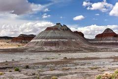 Les tepees - Forest National Park pétrifié Images libres de droits