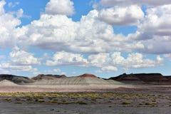 Les tepees - Forest National Park pétrifié Image stock