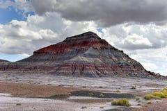 Les tepees - Forest National Park pétrifié Photographie stock