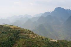 Les terrasses sur le pierre-plateau de Dong Van, Viet Nam Photos stock