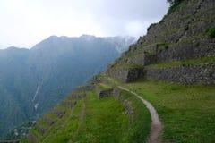 Les terres cultivables de terrasse le long de l'Inca traînent, le Pérou Photographie stock libre de droits