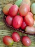 les tomates acidifient agréable au goût rouge Photo libre de droits