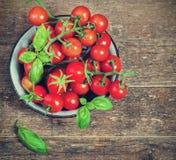 Les tomates-cerises fraîches dans un métal roulent sur une obscurité Photographie stock libre de droits