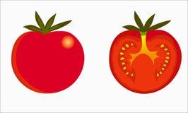 Les tomates dirigent sur le fond blanc photo stock