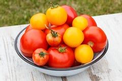 Les tomates en métal roulent dans le jardin le jour ensoleillé Image stock