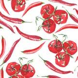 Les tomates lumineuses de branche avec des poivrons de piment modèlent la main de croquis d'aquarelle Photos libres de droits