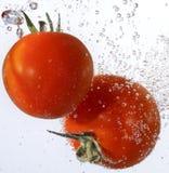Les tomates ont relâché dans l'eau Images libres de droits