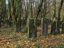 Les tombes de la forêt sont masquées Photo stock