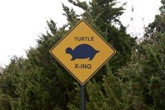 Les tortues sur la route, avertissant se connectent la route photos libres de droits