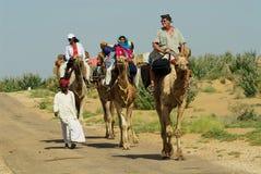 Les touristes apprécient le safari de chameau à Jodhpur, Inde Photo stock
