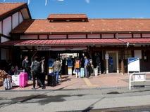Les touristes avec le sac arrive à la station de train Photographie stock libre de droits