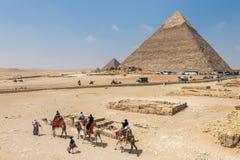 Les touristes montent sur des chameaux guidés par un homme local à Gizeh devant des pyramides, Egypte image libre de droits