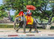Les touristes montent sur un éléphant en parc historique Photographie stock