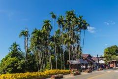 Les touristes ont visité le jardin royal de Doi Tung, ancienne résidence de la mère Srinagarindra de princesse, située sur des co images stock