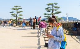 Les touristes prennent la photo du château de Himeji du jardin Photo libre de droits