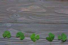Les trèfles de plan rapproché part sur la vue supérieure de fond en bois foncé avec l'espace de copie Photo stock