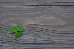 Les trèfles de plan rapproché part sur la vue supérieure de fond en bois foncé avec l'espace de copie Image libre de droits