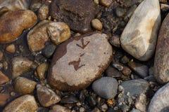 Les traces sur la pierre Images stock