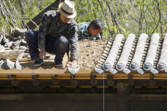 Les travailleurs de la construction étendent des tuiles Photos libres de droits