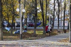 Les travailleurs de la municipalité rassemblent des feuilles en parc Les assistants sociaux de femmes ont enlevé le feuillage images stock