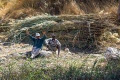 Les travailleurs font une pause des roseaux de coupe le long de la banque occidentale de la rivière le Nil près d'Assouan en Egyp Photographie stock libre de droits